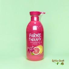 Гель для душа на основе минеральной воды с экстрактом грейпфрута 700 мл Daeng Gi Meo Ri Farms Therapy Sparking Grapefruit Clean Body Wash