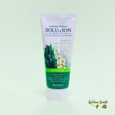 Мягкая пенка для умывания с экстрактами кактуса ромашки и алоэ вера 170 мл Deoproce Natural Perfect Solution Cleansing Foam Mild Soapberry&Cactus Flower